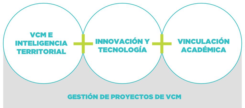 Currículum modular en el Diplomado de Vinculación con el Medio, Territorio e Innovación