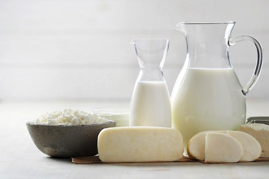 Lácteos: alimentos claves en todas las etapas de la vida